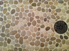 My new shower floor! I love watching the water trickle between the stones to the drain. Pebble Shower Floor, North Carolina Homes, Walk In Shower, Home Hacks, My Dream Home, Animal Print Rug, Bathroom Ideas, Bathrooms, Sweet Home