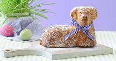 Velikonoční beránek | Recept Rodina.cz Gingerbread Cookies, Food And Drink, Powder, Baking, Gingerbread Cupcakes, Face Powder, Bakken, Backen, Sweets