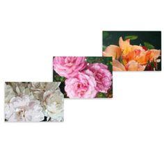 Floral Photorealism Wall Art - BedBathandBeyond.com