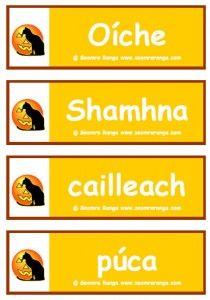 Halloween dictionary – Holidays and Events Halloween Dinner, Halloween Kids, Gaelic Words, Irish Language, Primary School, Holidays And Events, Ireland, Education, Languages