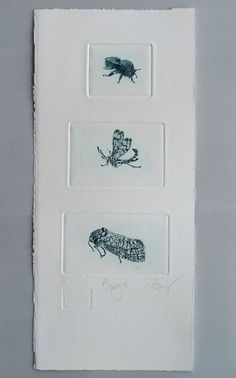 Cute bugs. Drypoint trio hand pulled by LynnBaileyPrintmaker, £60.00
