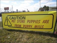 Say no to puppy mills!   #pets #care #puppy #dogs #puppymills #freedom #educate