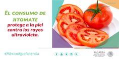 El consumo de jitomate protege a la piel contra los rayos ultravioleta. SAGARPA SAGARPAMX #MéxicoAgroPotencia