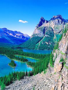 Yoho National Park,British Columbia,Canada: