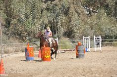 Obstacle Challenge | Horse Buzz A-Z