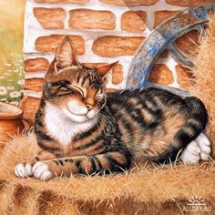 Forum - CATS in paintings and sketches