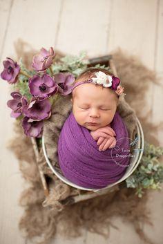 Newborn ( Studio ) Twin Dragonflies Photography