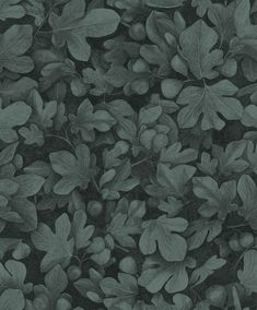Ficus Wallpaper has a sketched leaf design with a level effect. A lovely effect for a feature wallpaper. Ficus, Feature Wallpaper, Photo Wallpaper, Wall Wallpaper, Wall Colors, Colours, Inspiration Wall, Bottle Design, Leaf Design