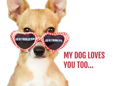 A funny Valentine's Day card template with a picture of a dog and a witty message for your other half. Valentines Day Card Templates, Heart Shaped Glasses, Dog Safety, Funny Valentine, Dog Love, Cute Dogs, Cards, Facebook, Health