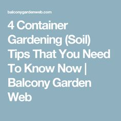 4 Container Gardening (Soil) Tips That You Need To Know Now | Balcony Garden Web