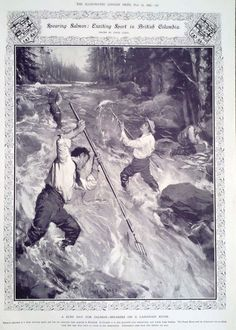 1909 PRINT SPEARING SALMON : EXCITING SPORT IN BRITISH COLUMBIA BY CYRUS CUNEO