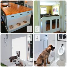 Clever Pet Ideas for your Next Design Project 1.Clear up precious floor space by creating built-in feeding stations in your kitchen. 2.Instead of using dividers to keep a pet out of a room (or in one) try a pocket gate. It is hidden when not in use and looks great when it is. Combine pet grooming and gardening by creating a wash station in a mudroom or laundry room, or even right outside the back door. Finally, why not train your dog to use his own water fountain?