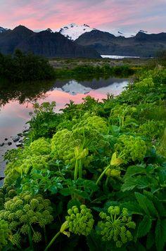 Skaftafell National Park