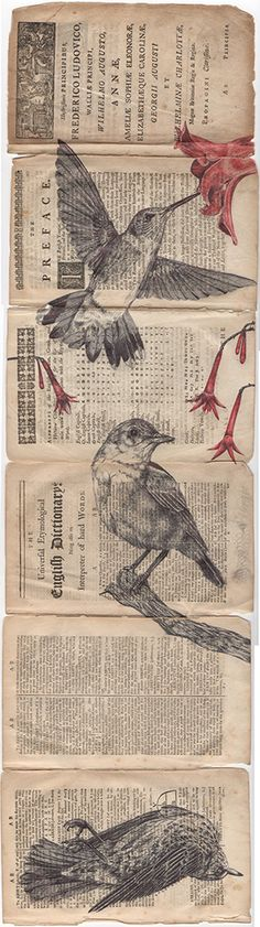 'all flames burn and return' bic biro drawing on a antique dictionary