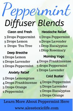Peppermint Essential Oil Diffuser Blends New to Essential Oils Searching for Simple Essential Oil Combinations for Diffuser Check out these Easy Essential Oil Blends and. Essential Oil Spray, Essential Oils Guide, Essential Oil Diffuser Blends, Essential Oil Blends For Colds, Essential Oils For Breathing, Breathe Essential Oil, Lemongrass Essential Oil Uses, Essential Oils Energy, Relaxing Essential Oil Blends