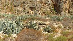 Gramvousa Island, Western Crete