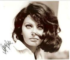 #SophiaLoren #vintage