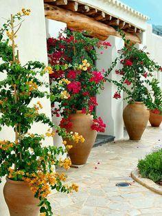 Cheap and simple DIY garden ideas that anyone can make 13 - Diygarden.live - Cheap and simple DIY garden ideas that anyone can make 13 - Cheap Landscaping Ideas, Small Backyard Landscaping, Patio Ideas, Backyard Ideas, Mulch Landscaping, Landscaping Borders, Desert Backyard, Cozy Backyard, Tropical Landscaping