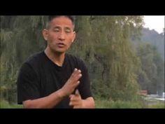 "QiGong master, real Chinese: Nan Lu (Dr. Nan Lu, OMD, LAc) • Traditional Chinese Medicine World Foundation • Nan's ""5 Element Theory"" video in his ""Qi Gong - The Dragon's Way®"""