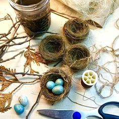 Make Your Own Birds Nests Easter Crafts And Bird Themed - Make Some Diy Bird Nests And Create Bird Themed Decor Gold Leaf Eggs And Display Under Glass Cloche Making Unique Display Its All For The Birds Such Great Ideas I Too Love Bird Nest Craft, Bird Crafts, Nature Crafts, Easter Crafts, Bird Nests, Crafts To Make, Arts And Crafts, Diy Ostern, Arte Floral