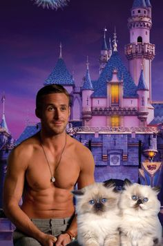No idea whats going on but there's R.G. kitties and the disney castle. Win.