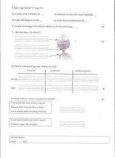 Character Art, Sheet Music, Google, Ariel, Music Sheets, Figure Drawings