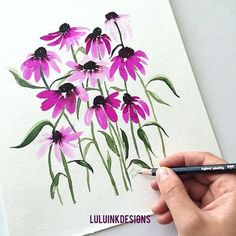 I grew up with Echinacea (specifically Purple Coneflower) in our garden. I…