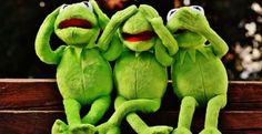 Not listening, not seeing The post Free Pixday on Pixabay & Kermit, Frog, Wine, Drink appeared first on Kermit the Frog Memes. Funny People Quotes, Funny Quotes, Quotes Quotes, Life Quotes, Dump A Day, Minion Humour, Minion Meme, Les Muppets, Sapo Meme