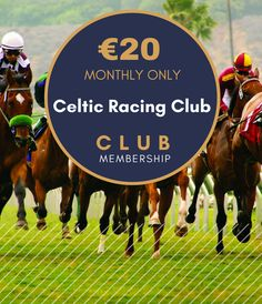 The opportunity to experience the thrill of horse racing & racehorse ownership at a very low cost maintaining a direct link with Irish thoroughbred industry Racehorse, Thoroughbred, Horse Racing, Patriots, Celtic, Irish, Horses, Club, Link