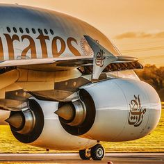 Emirates Golden Hour During at Manchester Airport Aircraft: Airbus A380-861 Engines: 4x GP7270 TAGS: #ek #emirates #airbus #airbus380 #heathrowairport #departures #dubai #aviation #aviationdaily #pilotslife #aircraft #airlines #ekcrew #instaaviation #avgeeks #ekcrew #heathrowairport #airbuslovers #dubai #pilotslife #instagramaviation #avgeek #aviationgeek #plane #planegeek #aircraftgeek #airlinesgeek #wildlife #planespotting #avporn #unitedforwildlife #photooftheday #uae @megaplane @insta