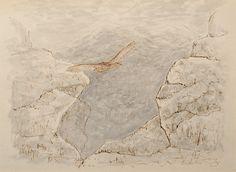 "Grouse in Flight in a Mountainous Landscape by Charles Murray Adamson (1820-1894) Pen and ink drawing with watercolour wash on paper In a cream conservation grade mount (matt) ​In good condition, as illustrated ​Drawing: 18.1 x 24.9 cm (visible); mount: 28 x 35.5 cm (11"" x 14"")"