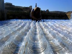 Plastic bottles roof 1greenhouse