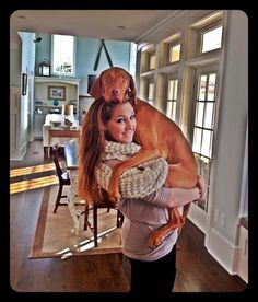 This is so typical! They think they are lap dogs and can never be close enough. #vizsla