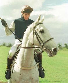 Desert Orchid with Richard Dunwoody up. High-class chaser with plenty of speed and stamina who won the Cheltenham Gold Cup 4 King George VI Chases, the Irish National the Tingle Creek & Victor Chandler Chases & the Whitbread Gold Cup Horse Fly, Horse Racing, Sport Of Kings, Horse World, Racehorse, Horse Breeds, Thoroughbred, Pretty Art, Courses
