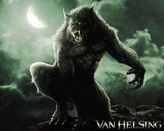 The werewolf concept--aka Lycans--in this series. No, vampires and werewolves will not fight in this series. That's over and done with.
