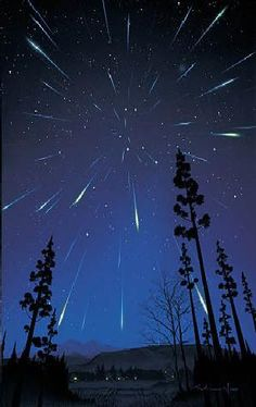 meteor shower-I've never seen one want to before I die! What A Wonderful World, Beautiful World, Beautiful Sky, Cosmos, Camping 3, Cool Photos, Beautiful Pictures, My Sun And Stars, Meteor Shower