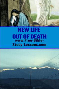 Mary was weeping unaware that Jesus had already risen from the dead. Sometimes we are mourning for a loss when the answer has already been given. Bible Study Lessons, Free Bible Study, Luke 8, Jesus Is Alive, Crucifixion Of Jesus, Bible Commentary, Jesus Calling, Hopes And Dreams, Bright Future