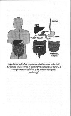 Combinarea-alimentelor-si-digestia-steve-meyerowitz Cute Disney Wallpaper, Advice, Health, Food, Health And Nutrition, Diet, Tips, Health Care, Essen