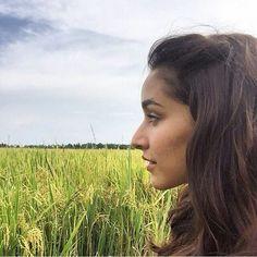 Shraddha Kapoor Saree, Shraddha Kapoor Instagram, Bollywood Girls, Bollywood Actors, Bollywood Celebrities, Sraddha Kapoor, Ranbir Kapoor, Ek Villain, Tropical Background