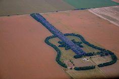 Pedro Martin Ureta, a farmer from Argentina, has designed a giant guitar around his farm, made from 7,000 trees