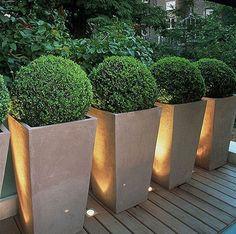 Tall Planters with floor lightings - Backyard Landscaping Outdoor Rooms, Outdoor Gardens, Modern Gardens, Courtyard Gardens, Garden Modern, Outdoor Kitchens, Small Gardens, Tall Planters, Boxwood Planters