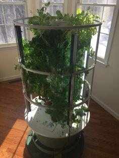2 5 2016 Home Tower Garden Grow Your Own