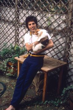Rare photos of the man, the legend, Freddie Mercury Photos) : theCHIVE Queen Freddie Mercury, John Deacon, Celebrities With Cats, Celebs, Freddie Mercuri, Roger Taylor, We Will Rock You, Queen Band, Queen Queen