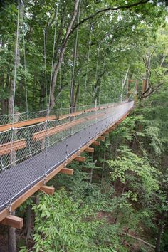 Canopy Walk & Emergent Tower (Kirtland) - 2018 All You Need to Know Before You Go (with Photos) - TripAdvisor Day Trips In Ohio, Weekend Trips, Oh The Places You'll Go, Cool Places To Visit, Places To Travel, Vacation Destinations, Vacation Spots, Greece Vacation, Vacation Ideas