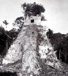 Cuando Tikal fue re-descubierta por primera vez había estado en las garras de la selva durante unos novecientos años. Méndez y Tut dejaron el lugar más o menos como lo habían encontrado; y otros visitantes ulteriores, tales como el botánico suizo Gustave Bernouilli en 1877, Alfred Maudslay en 1881 y 1882, y Teobert Maler en 1904, dejaron poca huella en los monumentos cubiertos de vegetación.