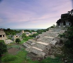 View of the Mayan ruins at Palenque - Mexico