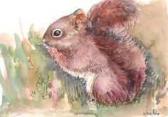 Original Painting Chipmunk Squirrel Animal art Watercolors Wall Art Gift Art Affordable For Gifting by ArtbyAshaa on Etsy