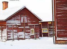 Luminen pihapiiri - lumiset hirret perinnetalo hirsitalo hirsitalot hirsiset rakennukset punamultamaali punamulta hirsi talo perinteinen suomalainen maaseudun asumus luminen piha pihapiiri lumikinokset lumituisku lunta valkoinen puhdas lumipeite punainen hirsirakennus talvi pakkanen tuisku kylmä tammikuu hirsinurkka