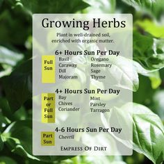 Growing Herbs - handy chart to know where to plant them according to how much sun they need #spon
