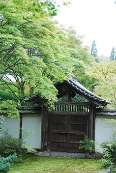 Also known as Saihoji, this is another UNESCO World Heritage Site (way to go, Kyoto). This temple is mainly known for its moss, and apparently has over 120 different varieties.